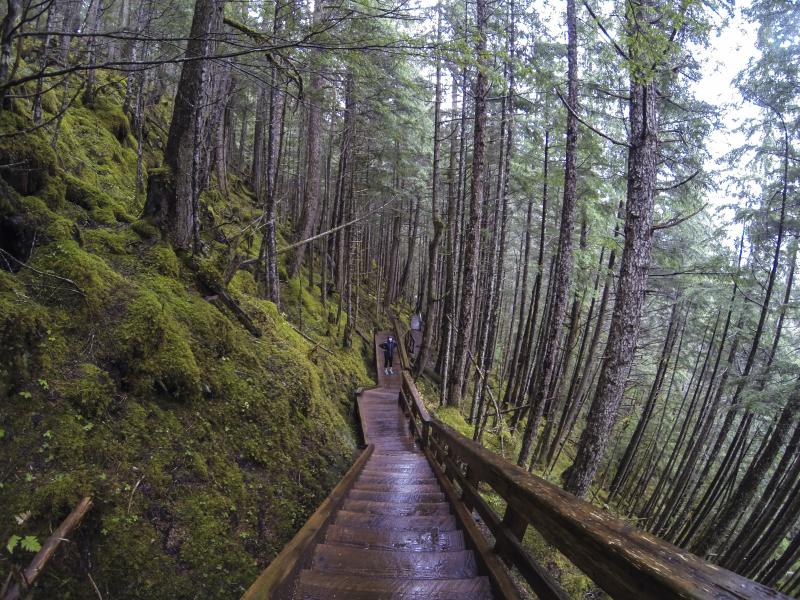 Mendenhall East Glacier Trail